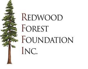 RFFI_logo2