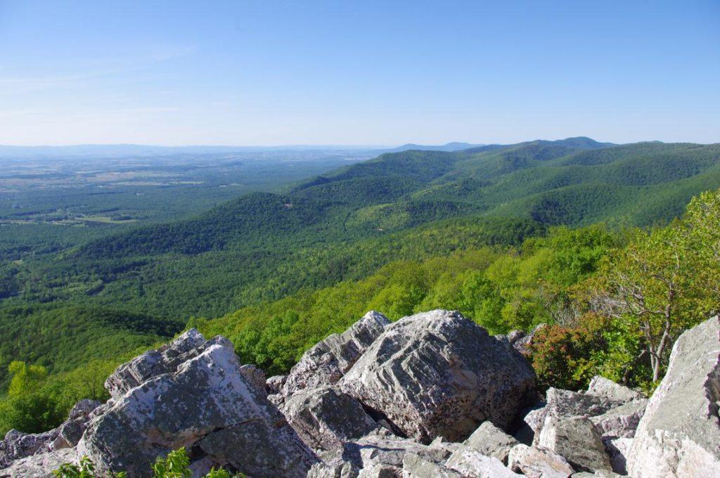 Landscape view by S. Austin